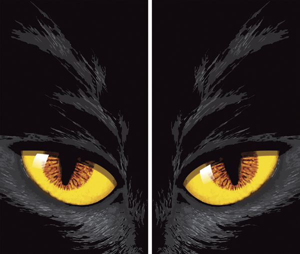 Cat eyes Halloween Window decor: Cat Themed Halloween Decor Guide