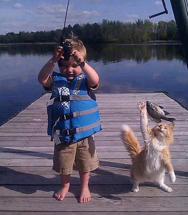 cat-thief-funny-animal-pictures-28__605.jpg