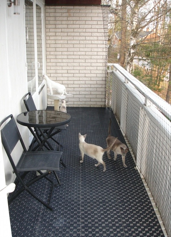 This is how one of our members secured their balcony using a net. Read more about Kitten Proofing Your Home.