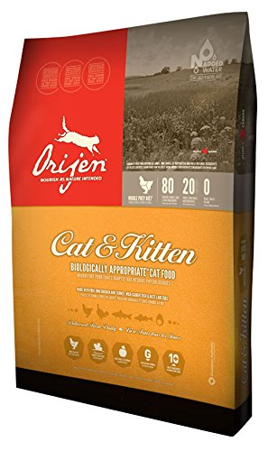 Orijen Cat Kitten Dry Cat Food.jpg