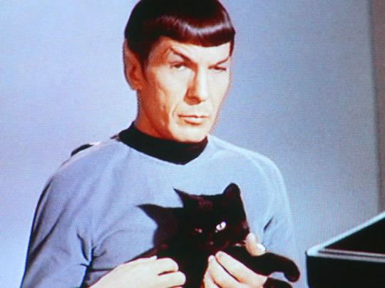 spock and isis.png