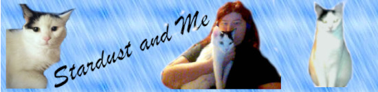 Stardust and Me 2.jpg