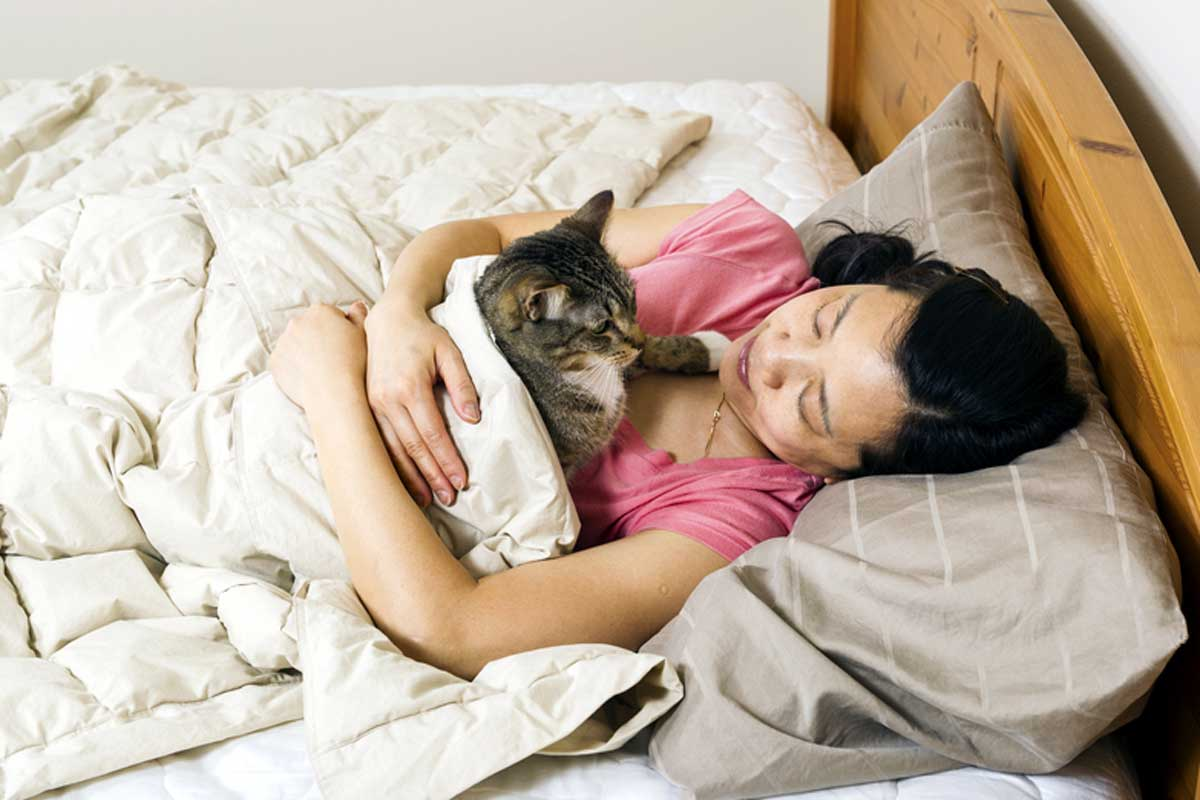 Cat sleeping in owners bed