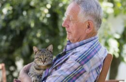 Senior man with tabby cat in his garden