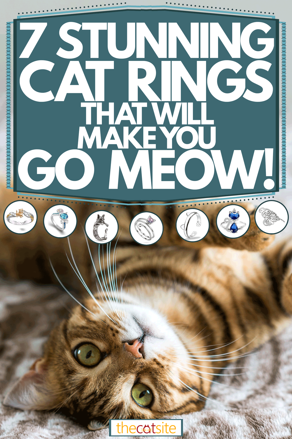 """A cat lying on the bed up right while looking on the camera, 7 Stunning Cat Rings That Will Make You Go """"meow!"""""""