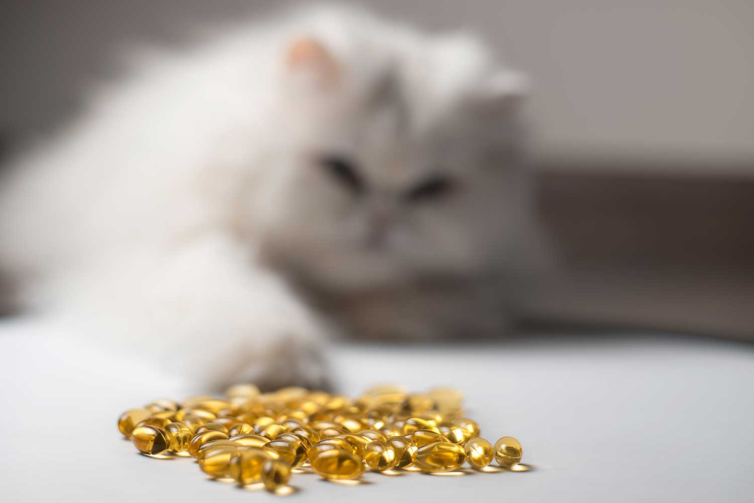 Several capsules of fish oil with curious cat in the background