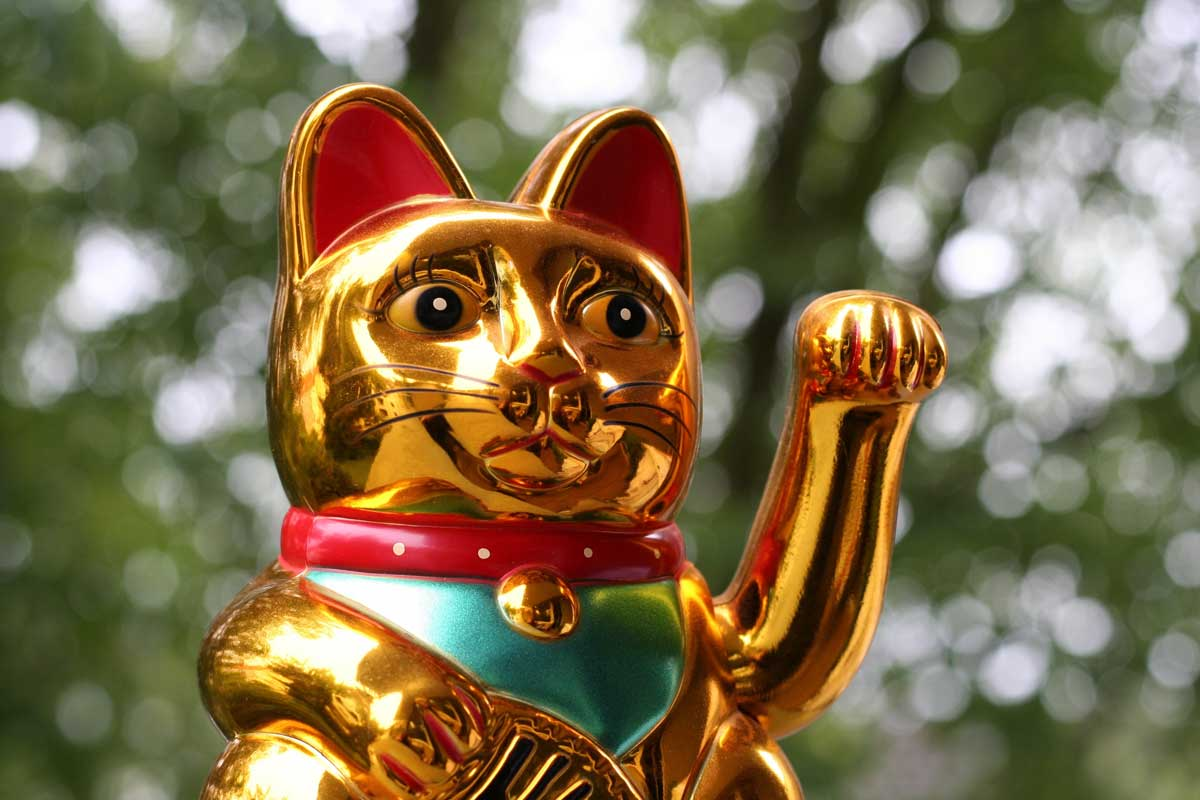 Japanese lucky cat (Maneki Neko) in closeup