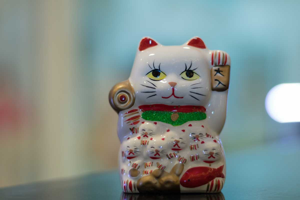 Lucky Cat in blurred background.