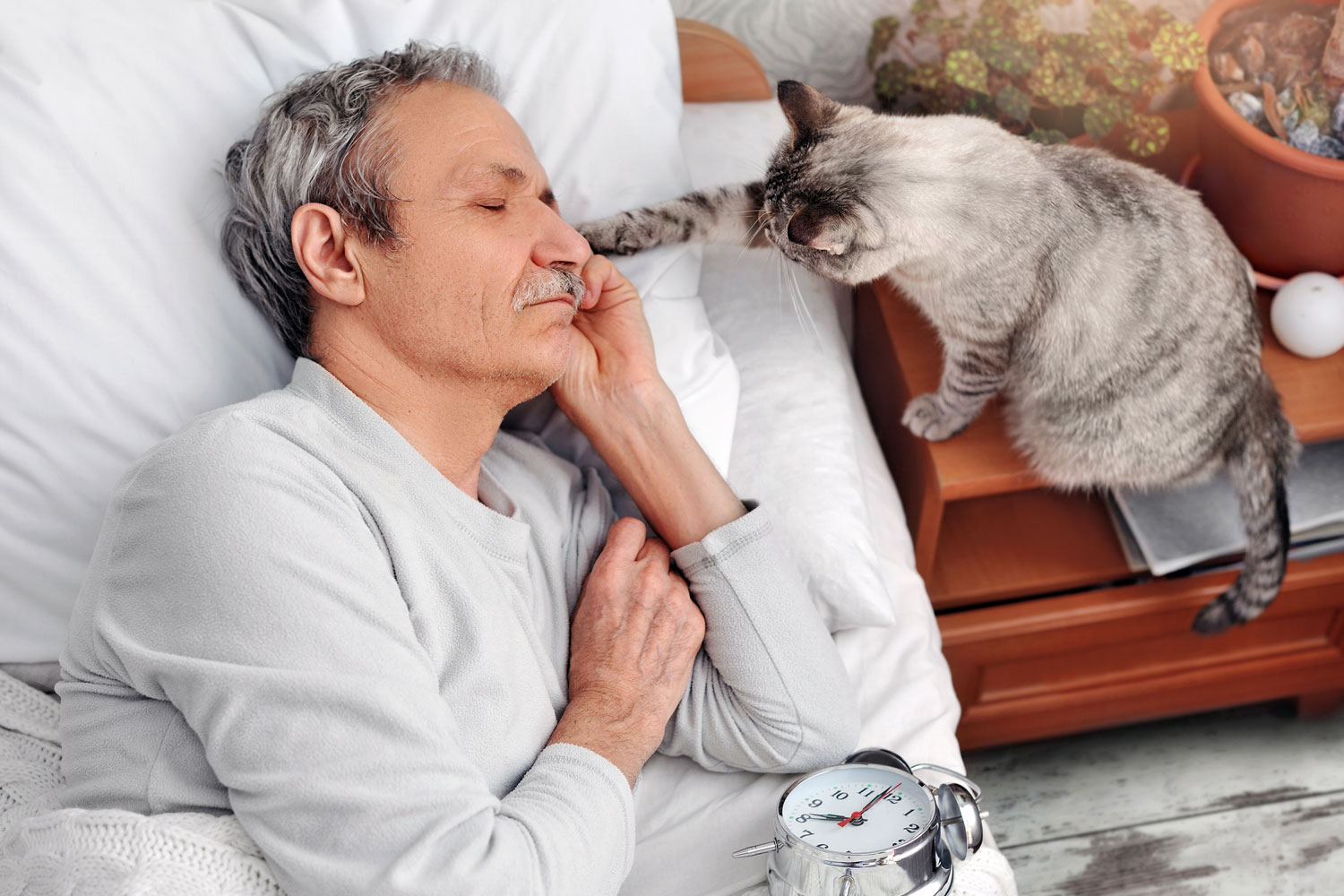 A cat waking up his elderly owner sleeping on the bed