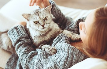 The Health Benefits Of Living With A Cat
