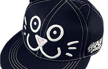 13 Fun Baseball Caps For Crazy Cat Lovers