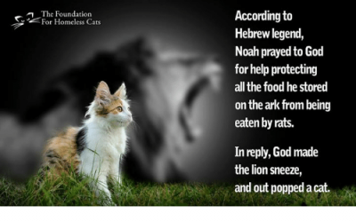 according-to-hebrew-legend-noah-prayed-to-god-for-help-26860846.png