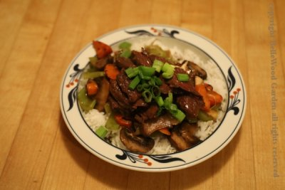 Dinner-Stir Fry_2020-04_plated up.jpg
