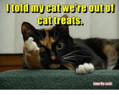 i-told-my-catwere-out-of-cat-treats-favorite-cats-16963335.png