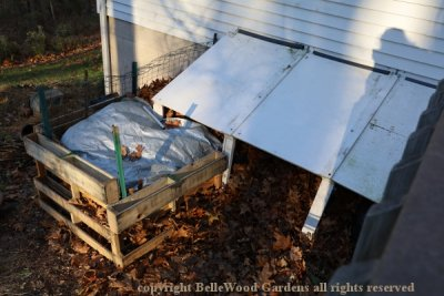 Winterizing Bananas_2019-11_overview of banana cover extension.jpg