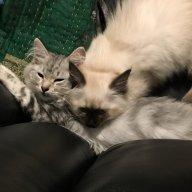 Zoya&Zirka