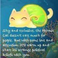 hermitcat