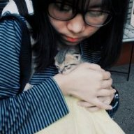 meowreen
