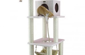 Cat Trees Amp Condos Page 2 Thecatsite