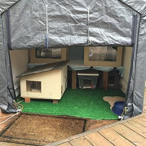 Tip Thread for building outdoor cat shelters.