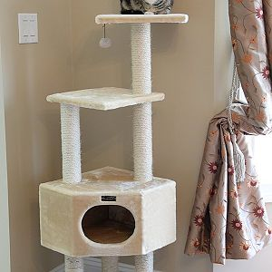 "Cat Trees: 17 designs that will make you go ""Wow!"""
