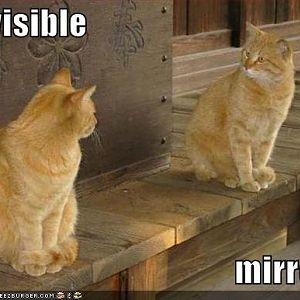 invisible mirror.jpg