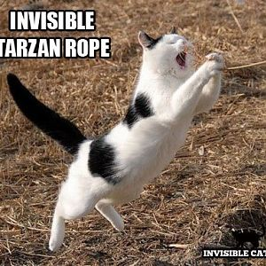 invisible tarzan rope.jpg