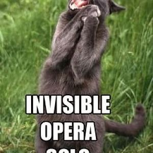 invisible opera solo.jpg