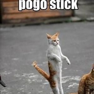 invisible pogo stick.jpg