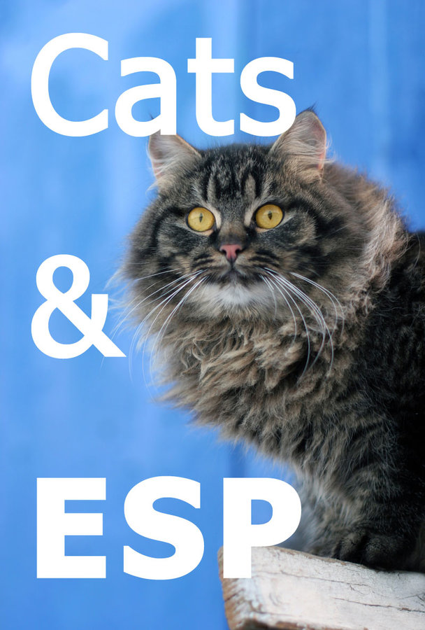 Can Cats Predict Earthquakes?