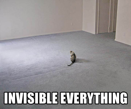 invisible-everything.jpg