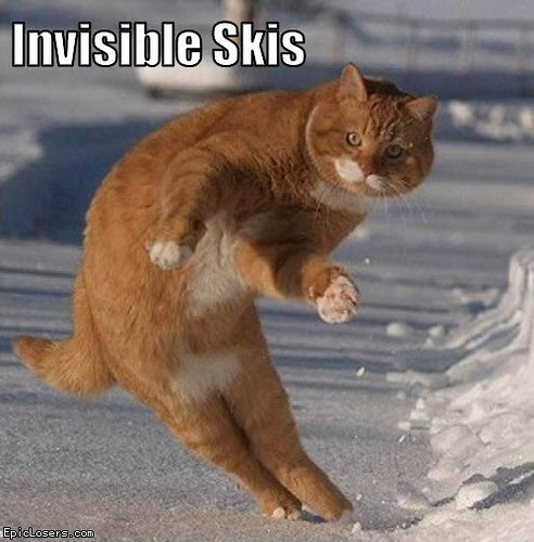 invisible skis.png