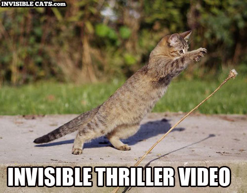 invisible thriller video.jpg